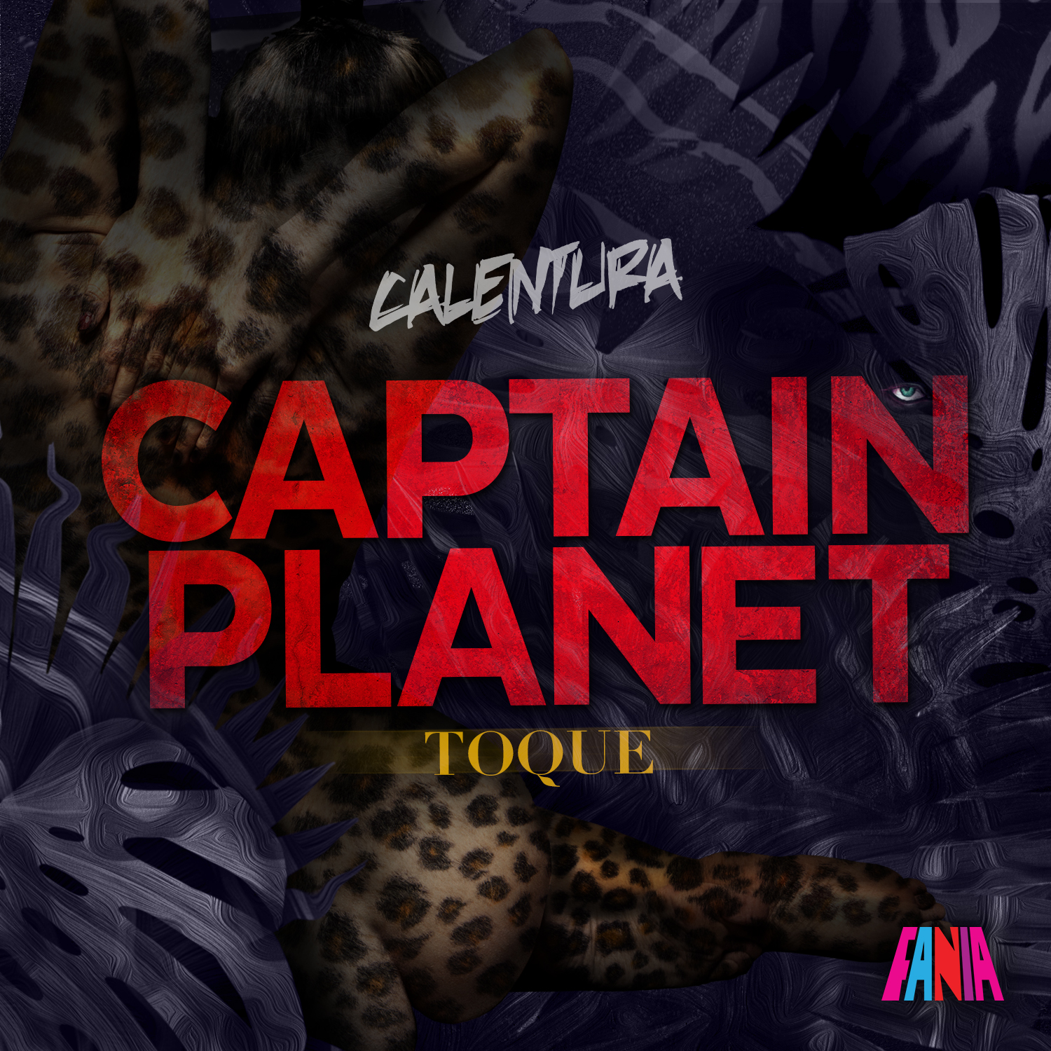 CAPTAIN-PLANET_TOQUE